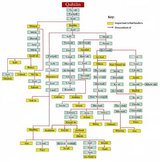 Qahtanite - A family tree of the Qahtanites