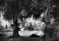 Queensland State Archives 31 Grounds of Government House Fernberg Road Paddington Brisbane March 1928.png
