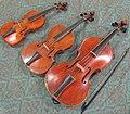 Quinte-de-violon Alto Violon.JPG