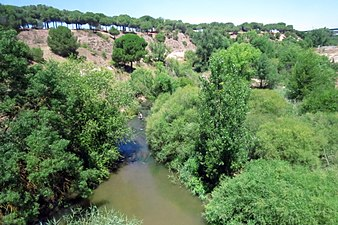 Río Adaja 3.jpg