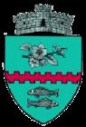 ROU SV Bunesti CoA.png