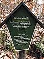 Radiumquelle (Klingenthal) 01.jpg
