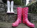 Rain boots on Stairs.jpg