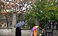 Rainy day of Tehran - 20 November 2011 47.jpg
