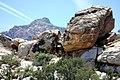 Red Rock Canyon.jpg