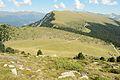 Resciesa Mont Dedite y Danter la Montes Urtijei cun jnevri.jpg