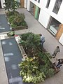 Residents of Greenhouse (Leeds) tend the planters in the courtyard.jpg