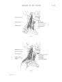 Richer - Anatomie artistique, 2 p. 53.png