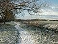 River Thame, Haydon Hill - geograph.org.uk - 96967.jpg