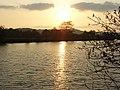 River Thames, Basildon - geograph.org.uk - 427409.jpg