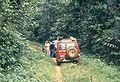 Road Ubundu Kisangani 1989.jpg