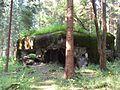 Rokytnice v Orlických horách, Panské Pole, R-S 70 (rok 2010; 01).jpg