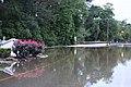 Roman Forest Flooding - 4-18-16 (26448615441).jpg