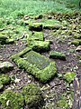 Roman villa (8) - geograph.org.uk - 3081338.jpg