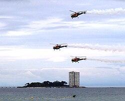 Rotores e Toralla 2007.jpg