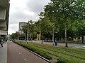 Rotterdam (12).jpg