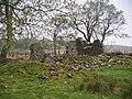 Ruin, Tower Plantation - geograph.org.uk - 812045.jpg