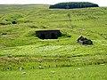 Ruins Below Hob Knowe - geograph.org.uk - 204607.jpg