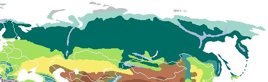 Russia vegetation