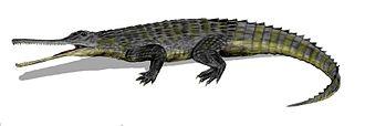 1844 in paleontology - Rutiodon, a relative of Termatosaurus.