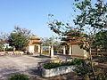Sân đình Tân Hoa.jpg