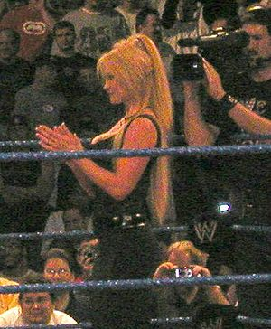 WrestleMania XV - Sable defended the WWF Women's Championship against Tori