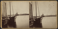 Sailboats at New London harbor, by Bolles & Frisbie.png