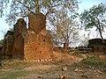 Salaiya, Madhya Pradesh 471101, India - panoramio (21).jpg