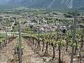 Salgesch - panoramio.jpg