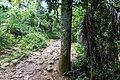 Samaná Province, Dominican Republic - panoramio (142).jpg