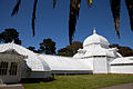 San Francisco Conservatory of Flowers-19.jpg