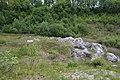 Schleswig-Holstein, Klein Nordende, Liether Kalkgrube Juni 2020 NIK 0652.jpg