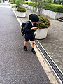 Schoolkid walking home playing a toy; May 2014.jpg