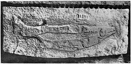 Sculpted fish on roof of cave, Abri du poison, Dordogne, Wellcome M0015068.jpg