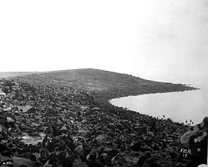 USS Concord (PG-3) - Concord took part in the sealing patrol that hoped to curb poaching of fur seals, like these photographed at the Garbotch rookery, Saint Paul Island, Alaska, in August 1891.