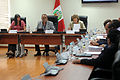 Sesión de la comisión de relaciones exteriores (6875088156).jpg