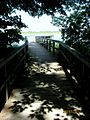Shaded boardwalk (5982326684).jpg