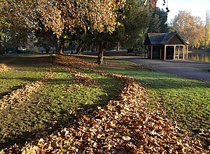 English: Shelter and piles of leaves, Batterse...