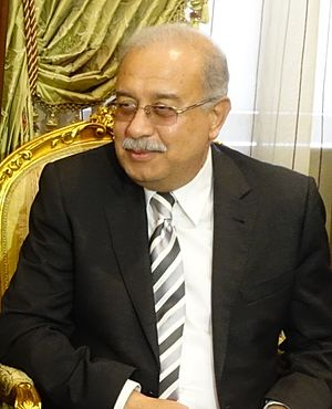 Prime Minister of Egypt - Image: Sherif Ismail (cropped)