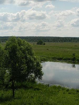 Sherna River - Sherna River at Filippovskoye