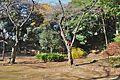 Shiba-maruyama-kofun zenkei.JPG