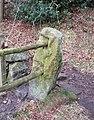 Shuttling poles - geograph.org.uk - 717811.jpg