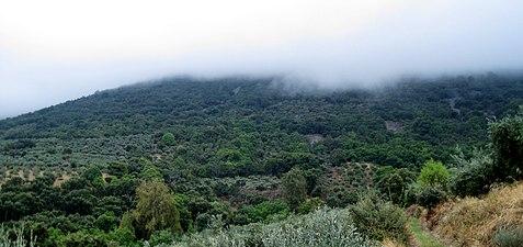 Sierra de Siruela.jpg