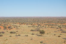 Simpson Desert Wikipedia