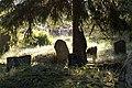 Skaistkalnes ebreju kapi - jewish cemetery - panoramio.jpg