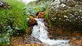 Small Waterfall in Iceland.jpg