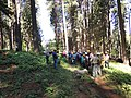 South Fork Amercian River Cohesive Strategy Field Trip (36013612605).jpg