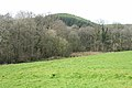 South Molton, towards Hacche Wood - geograph.org.uk - 397983.jpg