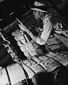 South Texas Cotton Oil Company Worker Weighing Cotton, Houston Pipe Line Company (11825204034).jpg