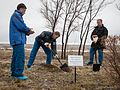 Soyuz TMA-19M crew during the tree planting ceremony.jpg
